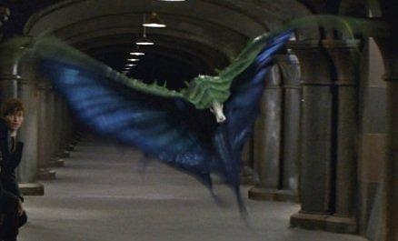 輝くようなグリーンとブルーの色をした羽を持つ魔法動物がこのスーピング・イーヴル。体の内側がブルー、外側がグリーンで、爬虫類と蝶々をミックスしたような外見をし